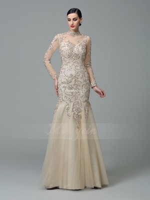 Sheath/Column High Neck Long Sleeves Net Floor-Length Applique Dresses